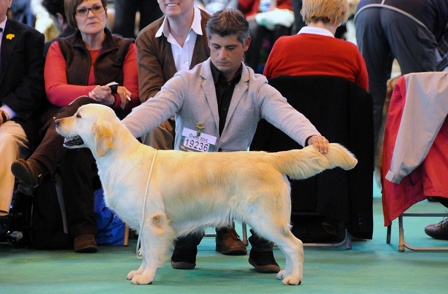 HOME PAGE CRUFTS 2014 2-2