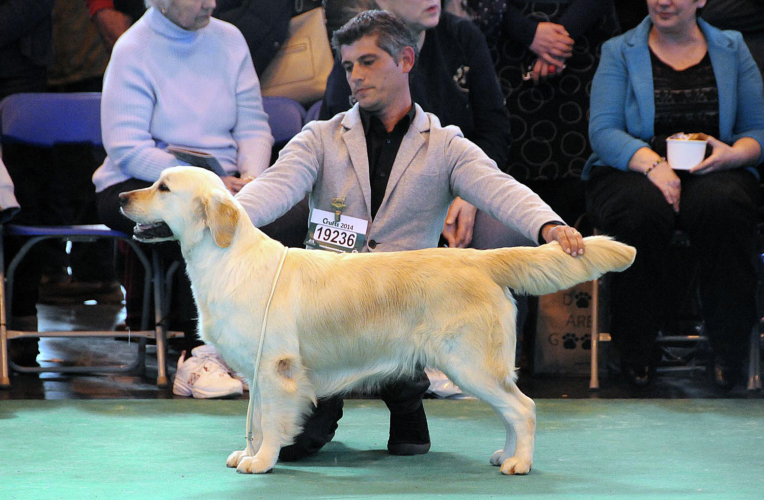 HOME PAGE CRUFTS 2014-2