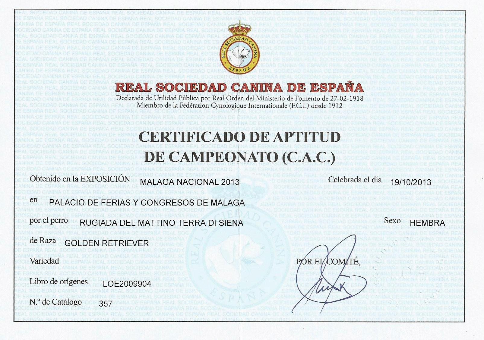 CAC JULIETTE MALAGA 2013