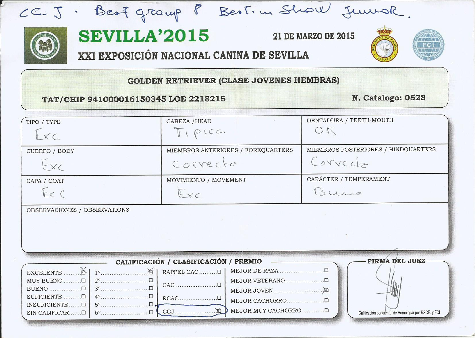 WEB TIARE CC JR BIS SEVILLA  2015