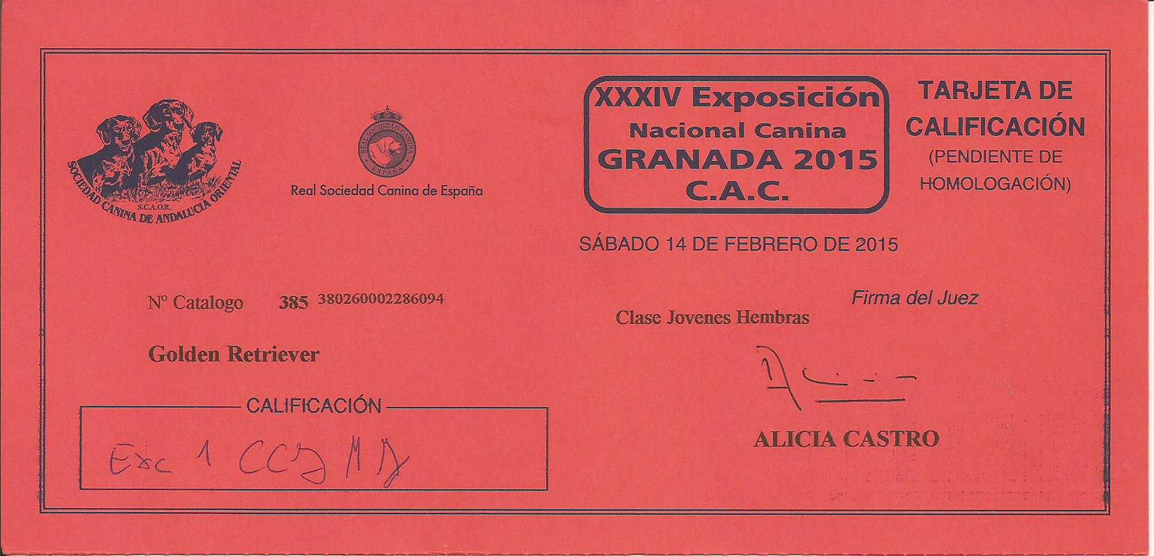 WEB TIARE CC JR GRANADA  2015