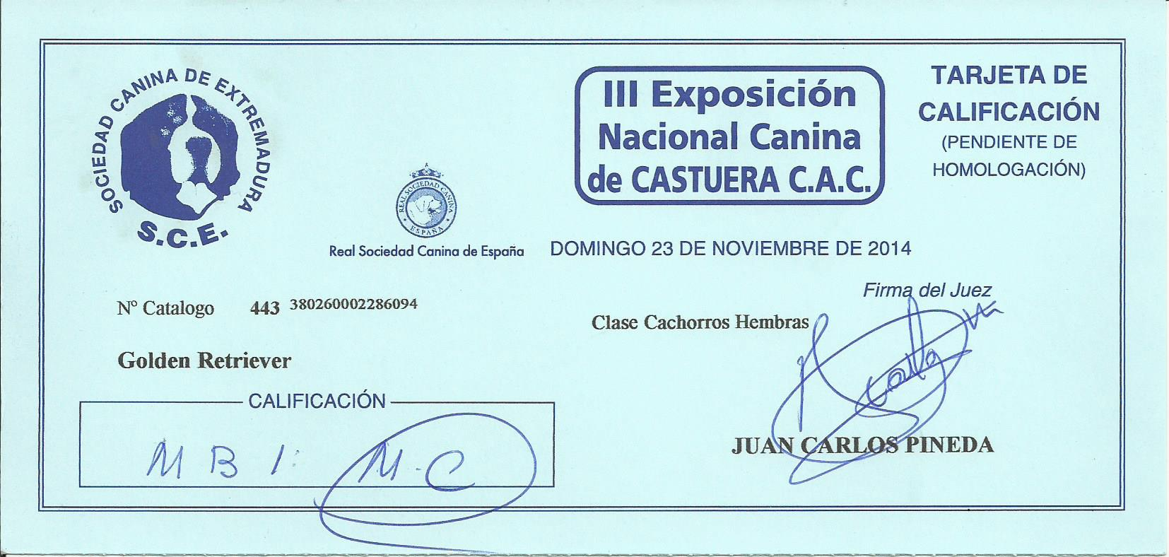 WEB TIARE MC CASTUERA 2014