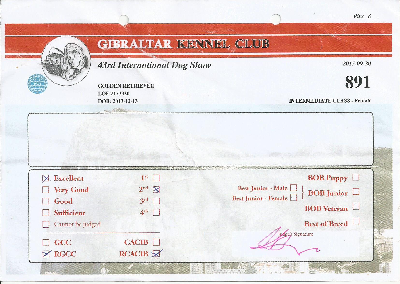 TATI RES CACIB GIBRALTAR 20 SEP 2015