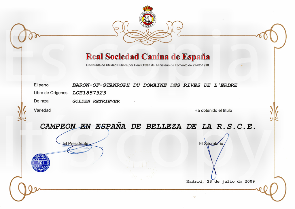 baron certificate of  spanish champion-1